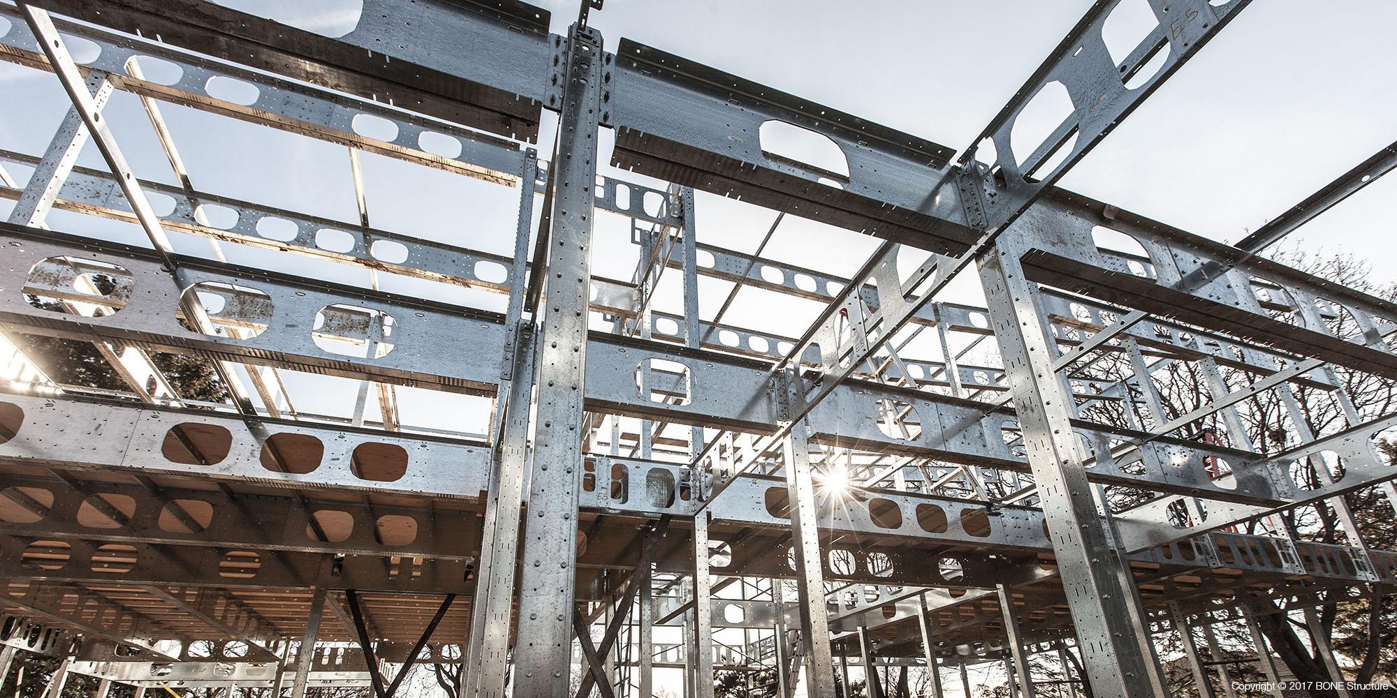 BONE Structure Authorized Builder Image 11